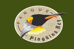 pinguino_rey